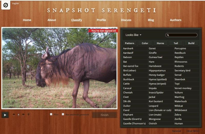 kuvakaappaus Snapshot Serengeti -sivulta
